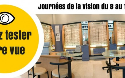 Journees de la vision a l'ICO