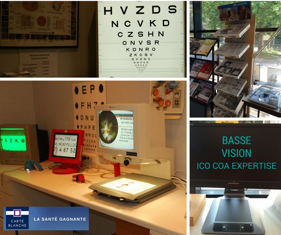 ICO COA expert Basse vision